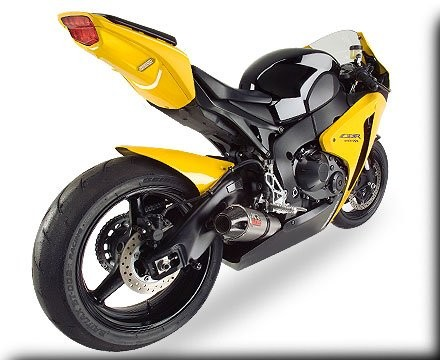 Hotbodies Undertail